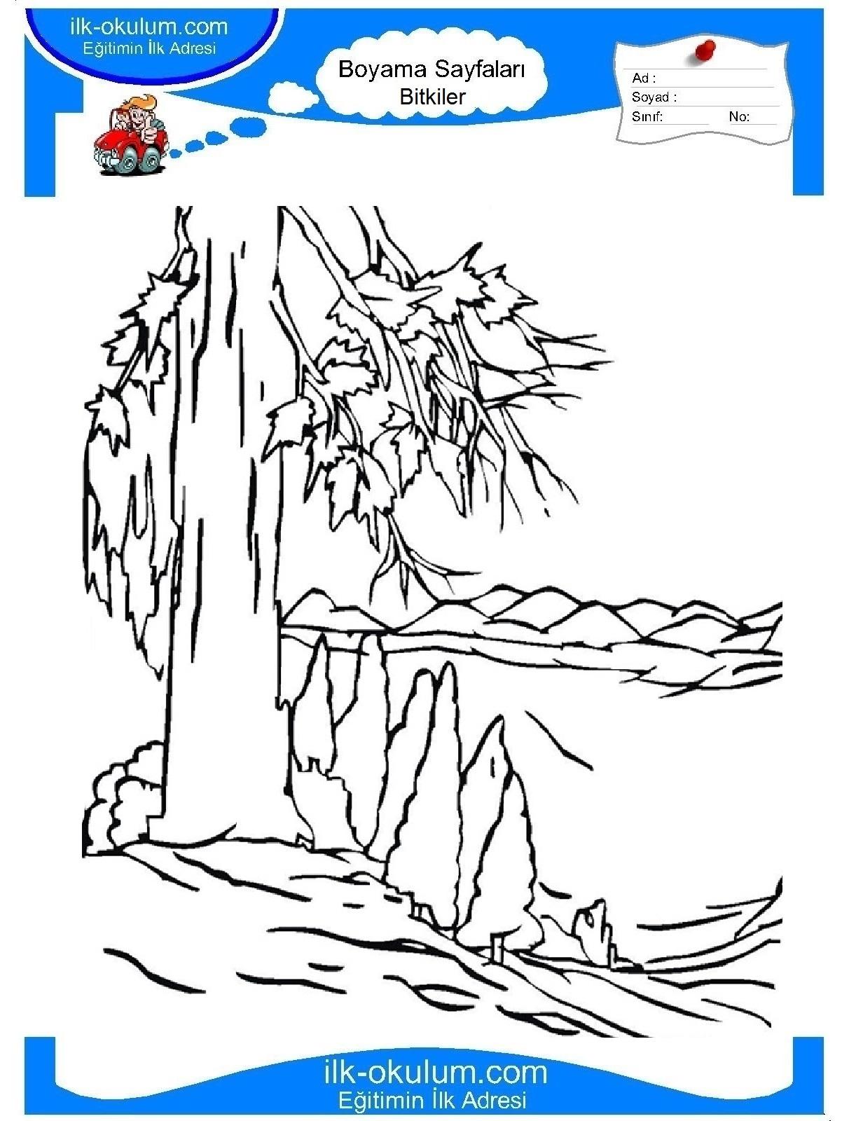 Природа пейзаж раскраски 4