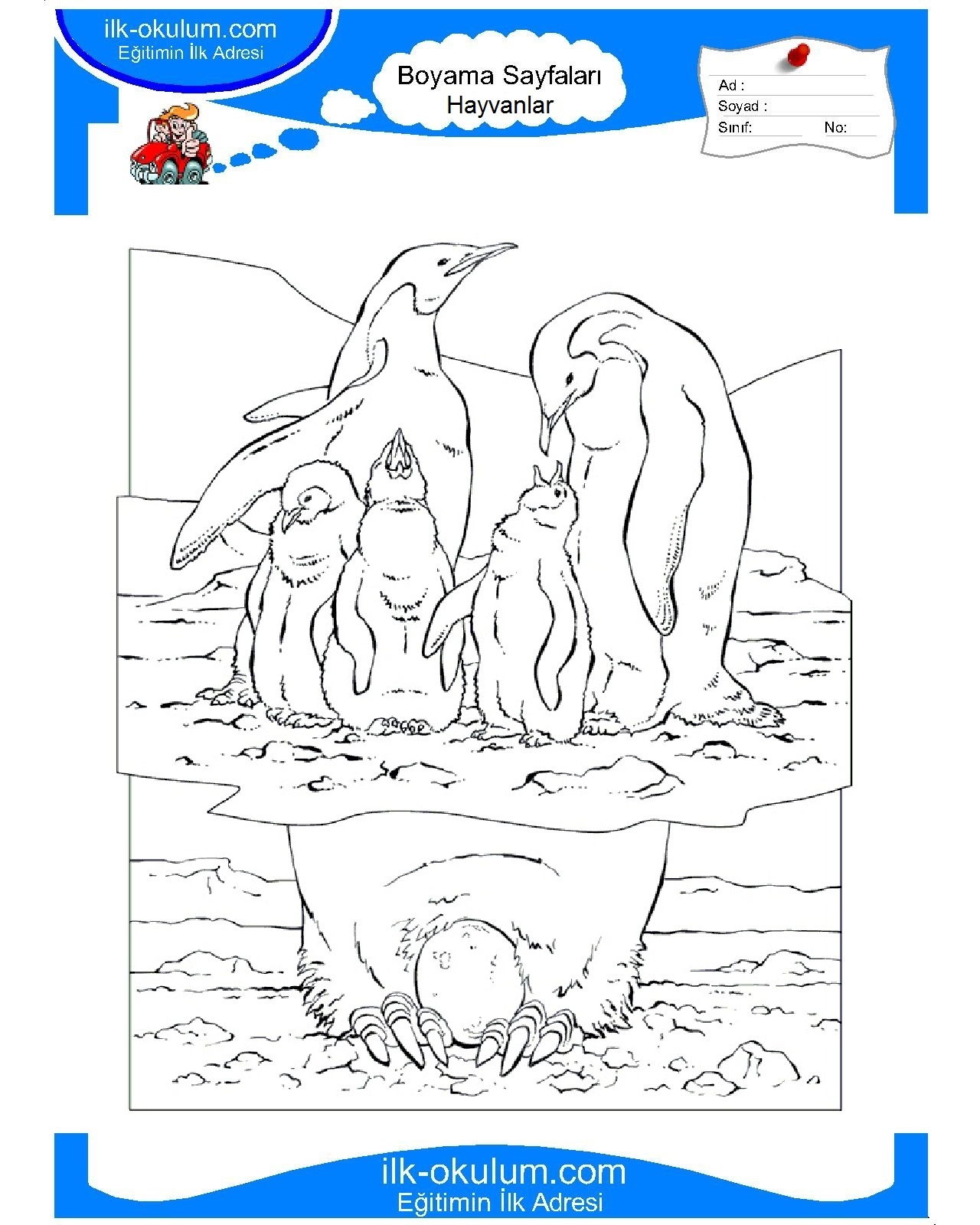 National geographic coloring book animals - a-k-b.info